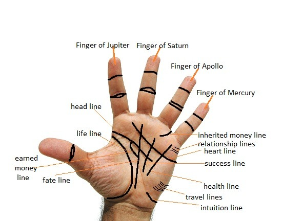 Palm Reading Marriage Line Meaning